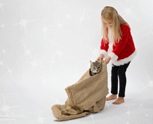 Weihnachtsbilder in Polch und dem Maifeld
